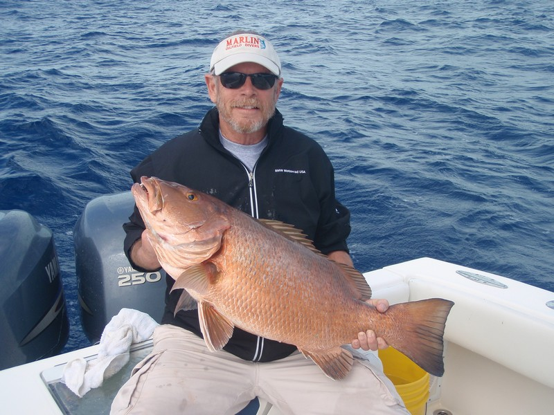 Fish key west florida as seen on espn key west gulf of for Gulf of mexico fishing charters