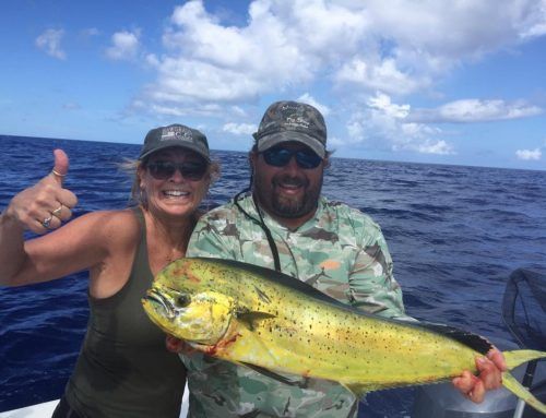 The Fish Key West Florida August 2017 Fishing Report
